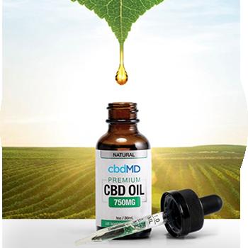 CPT cbdMD - CBD Oil